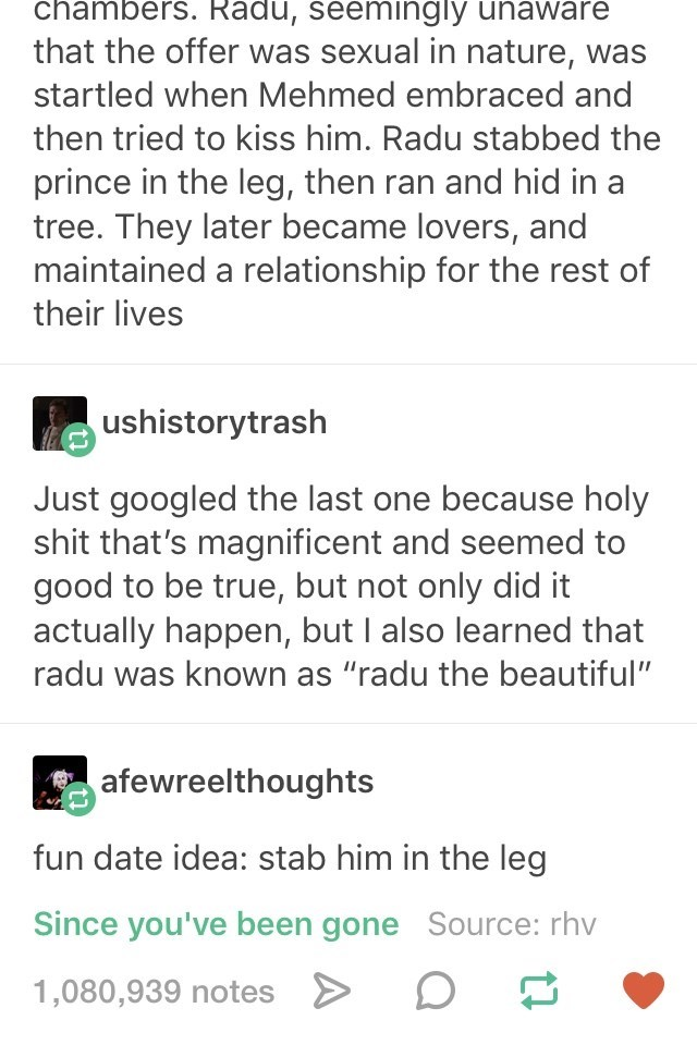 """Text - chambers. Radu, seemingly unaware that the offer was sexual in nature, was startled when Mehmed embraced and then tried to kiss him. Radu stabbed the prince in the leg, then ran and hid in a tree. They later became lovers, and maintained a relationship for the rest of their lives ushistorytrash Just googled the last one because holy shit that's magnificent and seemed to good to be true, but not only did it actually happen, but I also learned that radu was known as """"radu the beautiful"""" afe"""