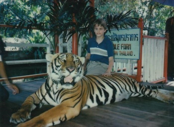 Tiger - LE FORM AN THAILAND