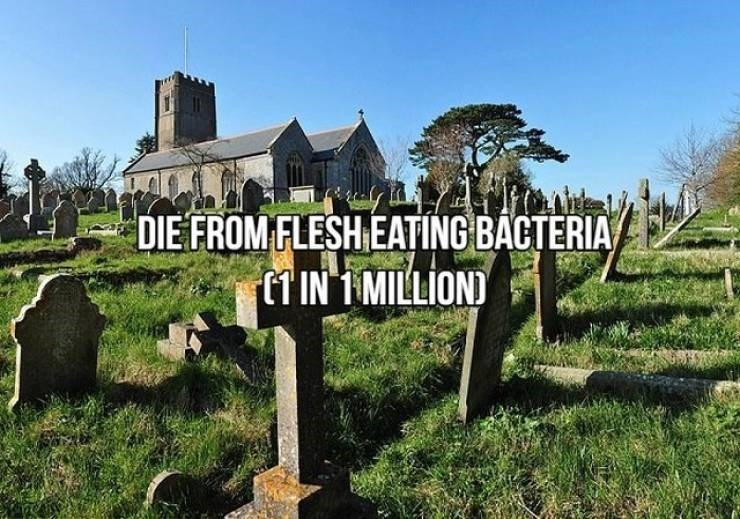 Property - DIE FROM FLESH EATING BACTERIA 1 IN 1 MILLIOND