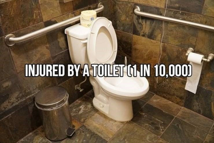 Toilet - INJURED BY A TOILET (1 IN 10,000)