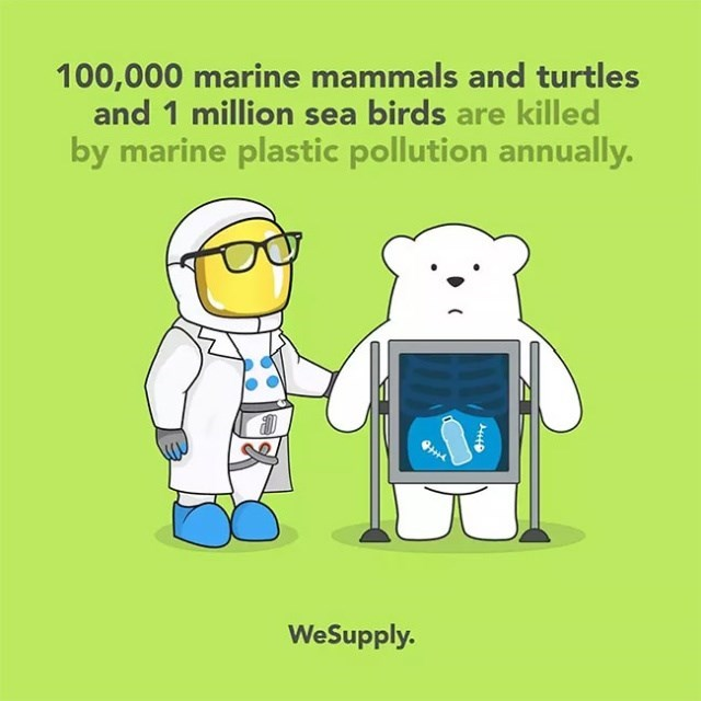 Cartoon - 100,000 marine mammals and turtles and 1 million sea birds are killed by marine plastic pollution annually. WeSupply.