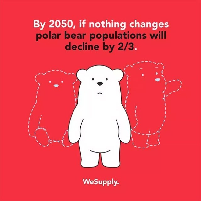 Text - By 2050, if nothing changes polar bear populations will decline by 2/3. WeSupply.