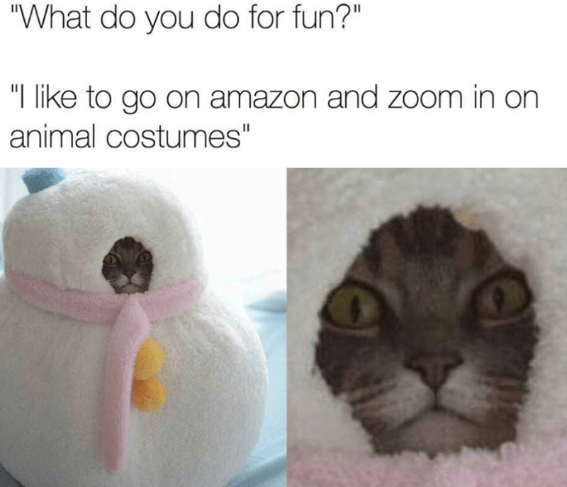 """Nose - """"What do you do for fun?"""" """"I like to go on amazon and zoom in on animal costumes"""" II"""