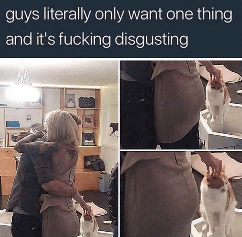 Human - guys literally only want one thing and it's fucking disgusting