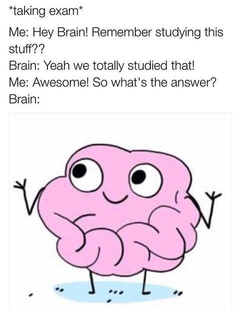 Pink - *taking exam* Me: Hey Brain! Remember studying this stuff?? Brain: Yeah we totally studied that! Me: Awesome! So what's the answer? Brain: