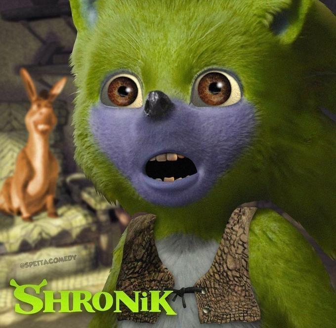 Funny edit of Sonic the Hedgehog - Shrek