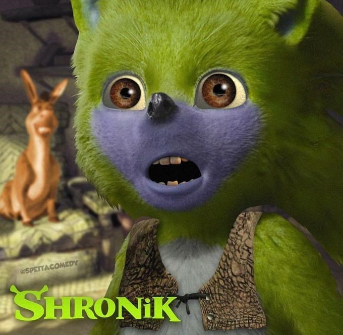 Funny edit of Sonic the Hedgehog - Shrek