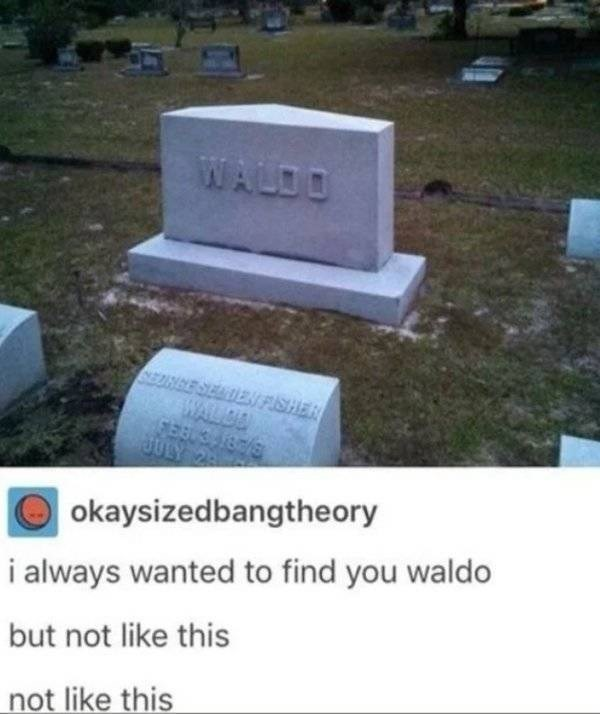 dank memes - Grave - WALDO ESEATIEN FISHE WALBA okaysizedbangtheory i always wanted to find you waldo but not like this not like this