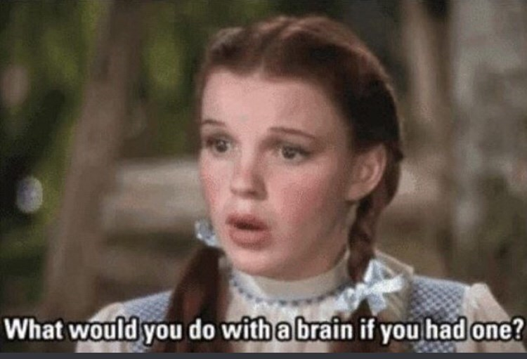 """Still of Dorothy from The Wizard of Oz where she says, """"What would you do with a brain if you had one?"""""""