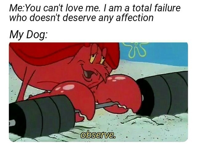 spongebob meme larry the lobster - Cartoon - Me:You can't love me. I am a total failure who doesn't deserve any affection My Dog: observe.