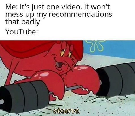 spongebob meme larry the lobster - Cartoon - Me: It's just one video. It won't mess up my recommendations that badly YouTube: observe.