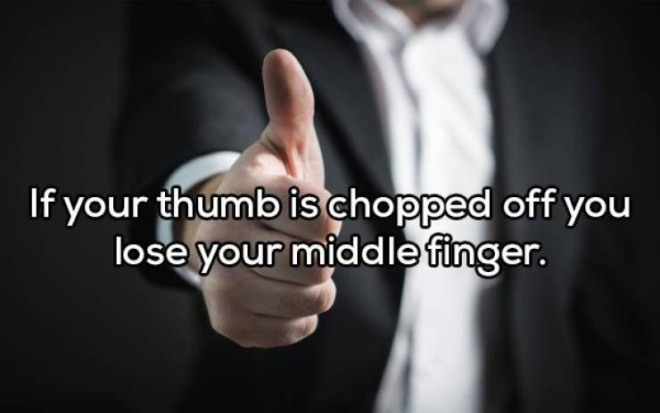 Text - If your thumb is chopped off you lose your middlefinger.