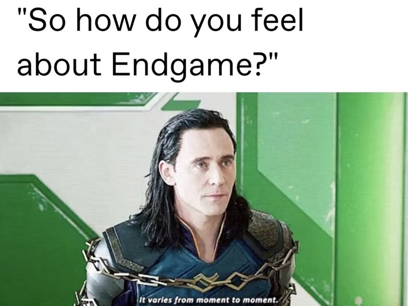 """Text - """"So how do you feel about Endgame?"""" {it varies from moment to moment."""
