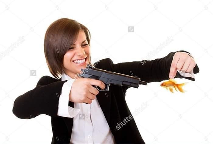 weird stock photo - Gun - tterst shutte