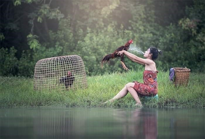weird stock photo - People in nature