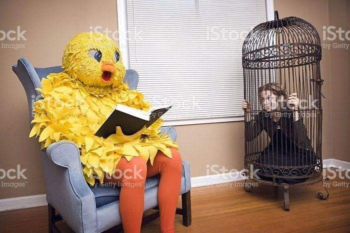 weird stock photo - Cage - EISto stol iSt ock Images NEXENENGNRSNy Getty tack w infooie by Getty mhas isteck Sto ock ock Images ony Images Getty Inages by Getty
