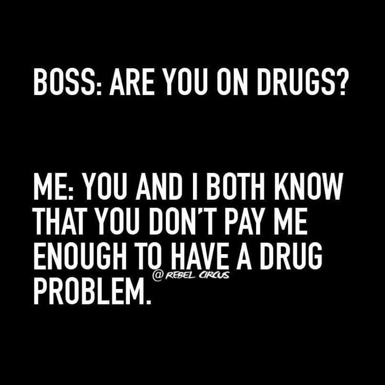 dank memes - Text - BOSS: ARE YOU ON DRUGS? ME: YOU AND I BOTH KNOW THAT YOU DON'T PAY ME ENOUGH TO HAVE A DRUG PROBLEM. @REBEL CIRCS