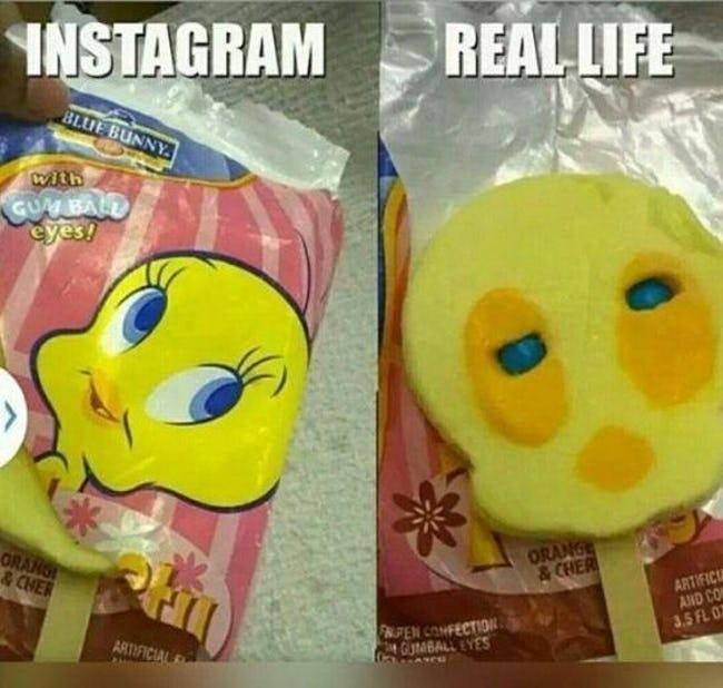 'Instagram vs. Reality' meme - Tweedy Bird popsicle