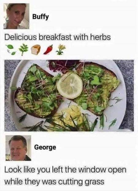 "Funny tweet that reads, ""Delicious breakfast with herbs"" above a photo of some toast with green herbs;"" someone comments below, ""Look like you left the window open while they was cutting grass"""