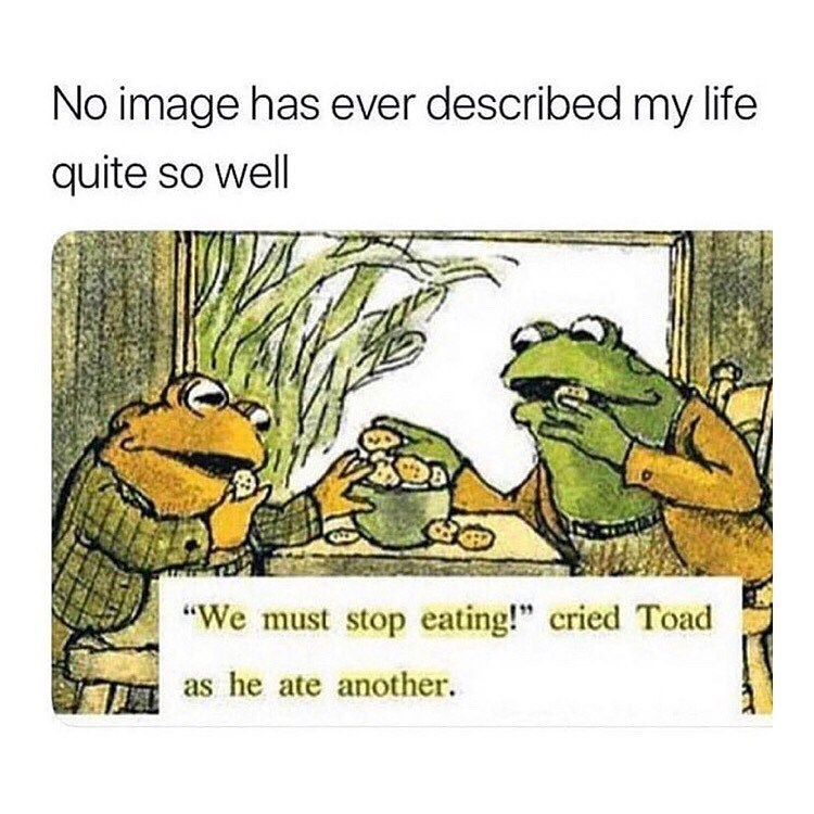 Funny meme, frog and toad, can't stop eating cookies.