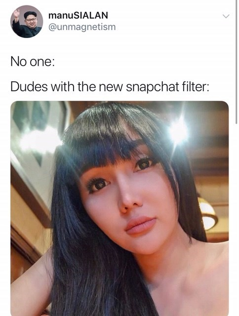 meme gender filter - Hair - manuSIALAN @unmagnetism No one: Dudes with the new snapchat filter:
