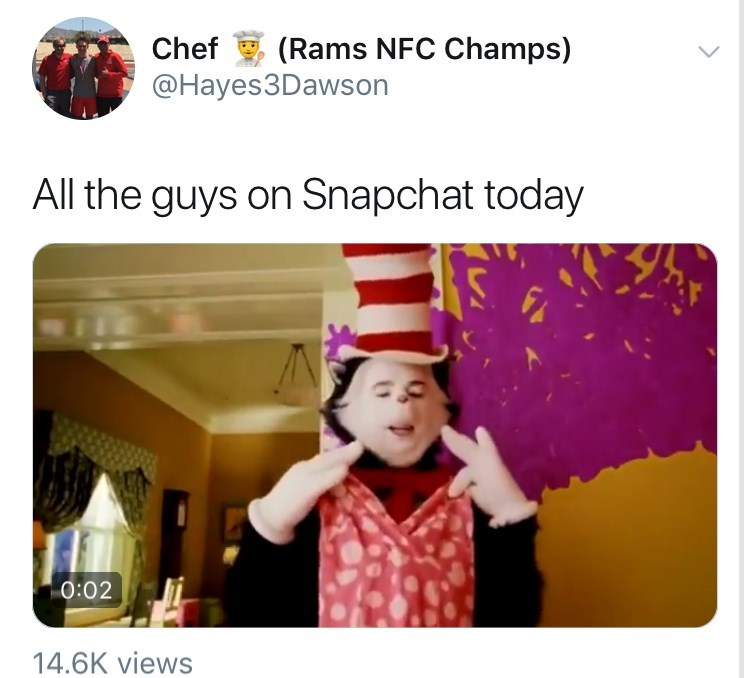 """""""All the guys on snapchat today"""" cat in the hat trying on a dress, snapchat girl filter, snapchat gender swap filter, snapchat gender change filter."""