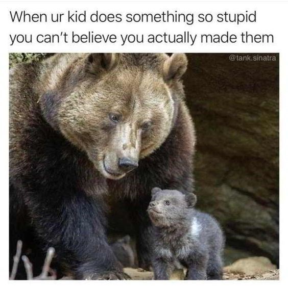 Mother's Day Meme - Brown bear - When ur kid does something so stupid you can't believe you actually made them @tank.sinatra