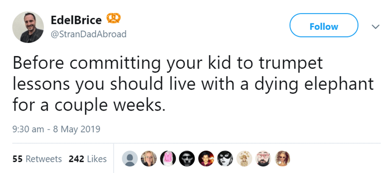 Text - EdelBrice Follow @StranDadAbroad Before committing your kid to trumpet lessons you should live with a dying elephant for a couple weeks. 9:30 am - 8 May 2019 55 Retweets 242 Likes