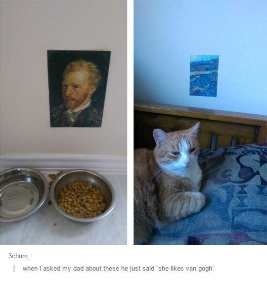 "wholesome memes - Cat - 3chum when i asked my dad about these he just said ""she likes van gogh"