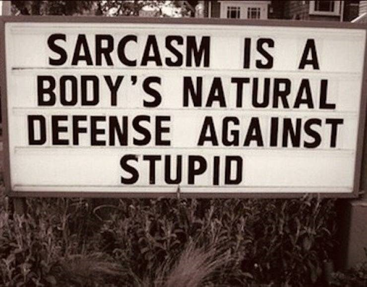 Font - SARCASM IS A BODY'S NATURAL DEFENSE AGAINST STUPID