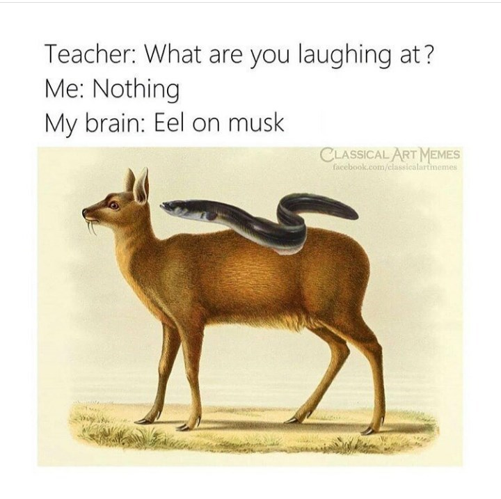 Wildlife - Teacher: What are you laughing at? Me: Nothing My brain: Eel on musk CLASSICAL ART MEMES facebook.com/classicalartimemes