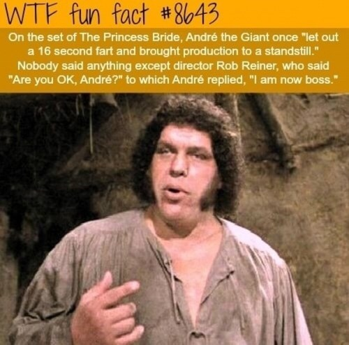 """Album cover - WTF fun fact #8643 On the set of The Princess Bride, André the Giant once """"let out a 16 second fart and brought production to a standstill."""" Nobody said anything except director Rob Reiner, who said """"Are you OK, André?"""" to which André replied, """"I am now boss."""""""