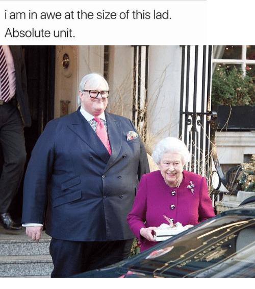 Absolute unit, large British politician