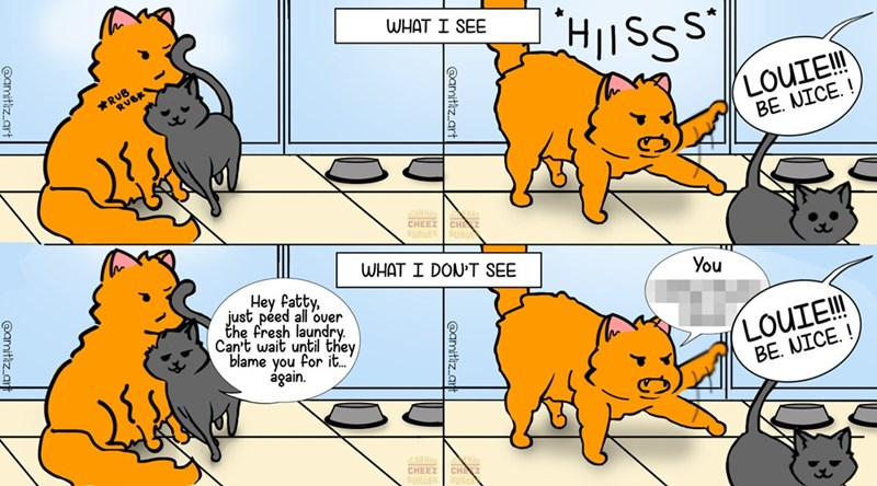 Webcomic funny comics cat comics instagram comics funny cats comic Cats funny - 9305737472
