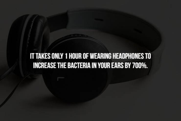 Headphones - IT TAKES ONLY 1 HOUR OF WEARING HEADPHONES TO INCREASE THE BACTERIA IN YOUR EARS BY 700%.