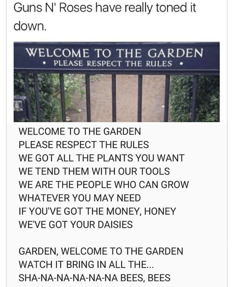 shitpost - Text - Guns N' Roses have really toned it down. WELCOME TO THE GARDEN PLEASE RESPECT THE RULES WELCOME TO THE GARDEN PLEASE RESPECT THE RULES WE GOT ALL THE PLANTS YOU WANT WE TEND THEM WITH OUR TOOLS WE ARE THE PEOPLE WHO CAN GROW WHATEVER YOU MAY NEED IF YOU'VE GOT THE MONEY, HONEY WE'VE GOT YOUR DAISIES GARDEN, WELCOME TO THE GARDEN WATCH IT BRING IN ALL THE... SHA-NA-NA-NA-NA-NA BEES, BEES