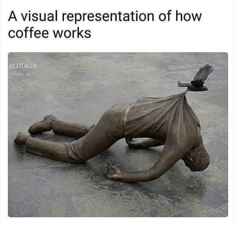 shitpost - Adaptation - visual representation of how coffee works @LUTALO8