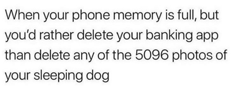 Text - When your phone memory is full, but you'd rather delete your banking app than delete any of the 5096 photos of your sleeping dog