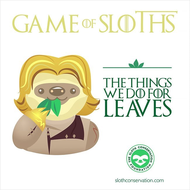 Text - GAME OF SLOIHS THETHINGS WEDOFOR LEAVES CONS UNDATION slothconservation.com PABIVATION SER SLOTH анL
