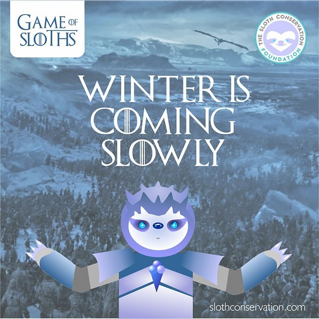 Animation - UCOHEERVATO GAME OF SLOTHS BUNDATION WINTER IS COMING SLOWLY slothconservation.com HE SLOTH