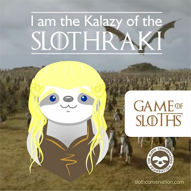 Text - I am the Kalazy of the SLOTHRAKI GAME OF SLOTHS CONSE BENEATION slothconservation.com ERVATION SLOTH SH FOUR