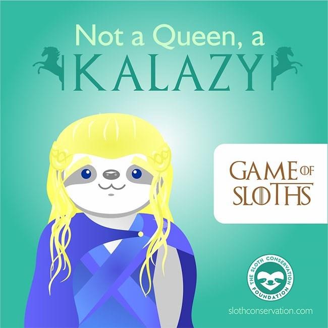 Text - Not a Queen, a KALAZY GAME OF SLOTHS SARDAIO slothconservation.com SERALON