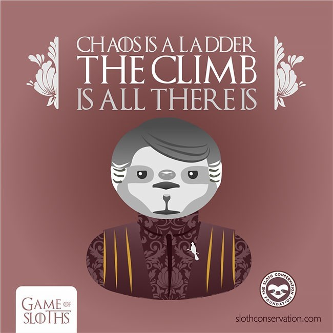 Text - CHADS IS A LADDER THE CLIMB IS ALL THERE IS CONSE GAME OF SLOTHS slothconservation.com HA FU