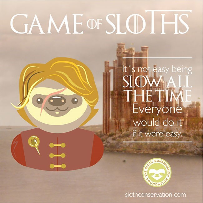 Text - GAME OF SLOTHS It's not easy being SLOWALL THE TIME Everyone would do it if it were easy CUNDATION slothconservation.com SLOTH OARKINVATIOS THE