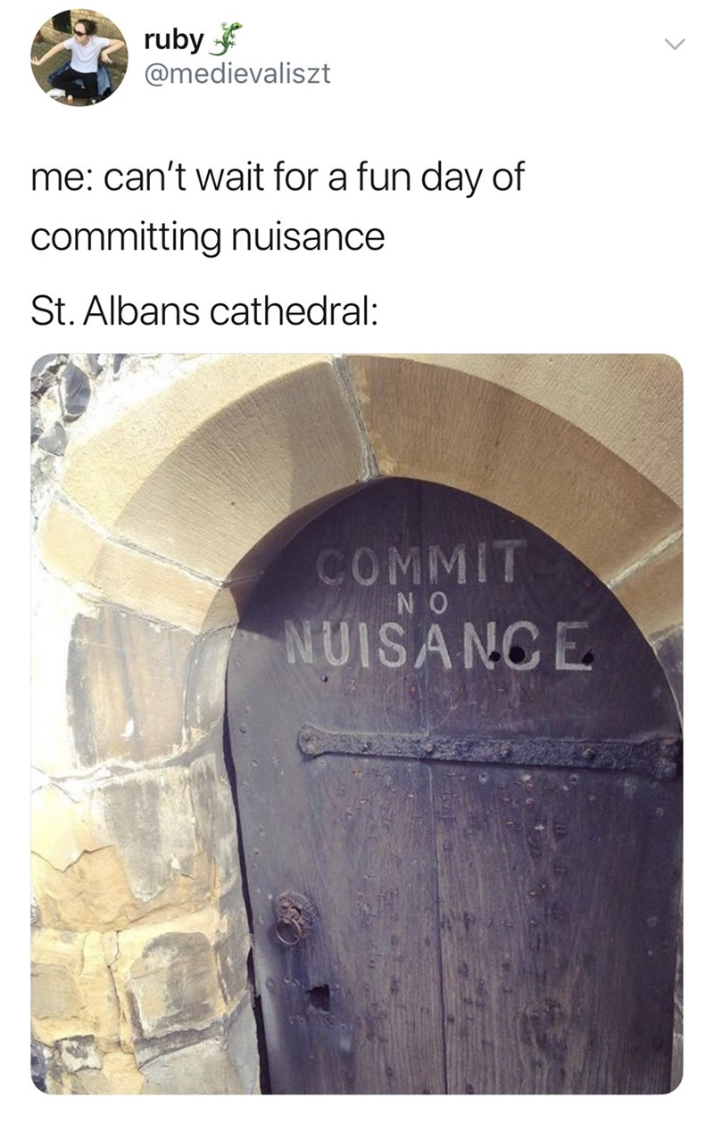 good tweets - Text - ruby @medievaliszt me: can't wait for a fun day of committing nuisance St. Albans cathedral: COMMIT N O NUISANCE