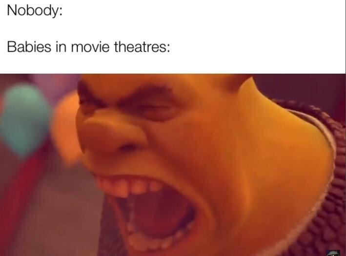 """Caption that reads, """"Nobody: ... Babies in movie theaters: ..."""" above a still of Shrek yelling"""