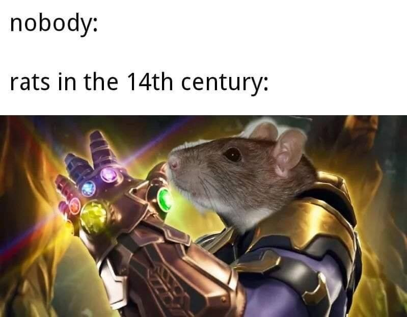 dank memes - Rat - nobody: rats in the 14th century: