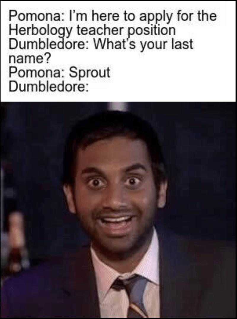 dank memes-pomona and dumbledore