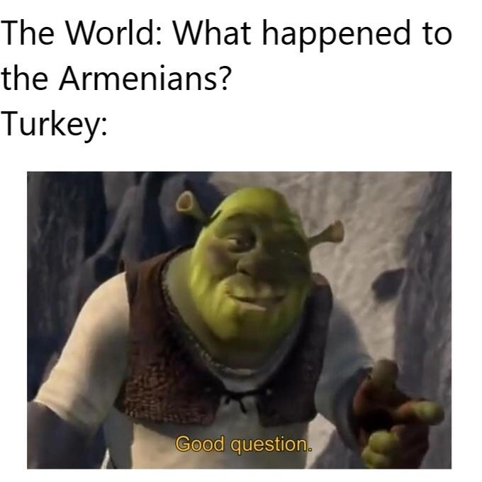 meme - Photo caption - The World: What happened to the Armenians? Turkey: Good question.