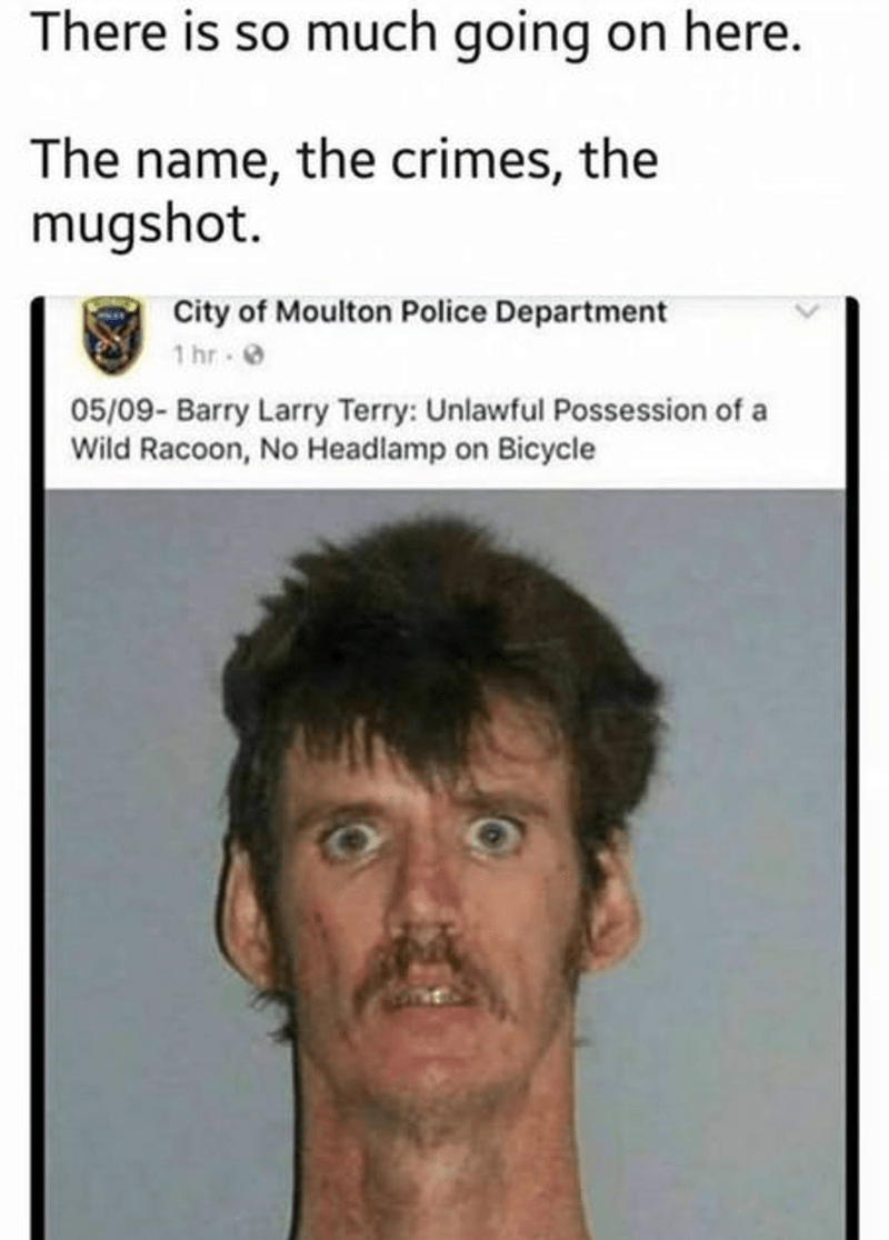 Face - There is so much going on here. The name, the crimes, the mugshot. City of Moulton Police Department 1 hr 05/09- Barry Larry Terry: Unlawful Possession of a Wild Racoon, No Headlamp on Bicycle